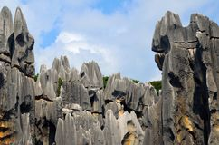 Karst landforms,Stone forest Royalty Free Stock Photography