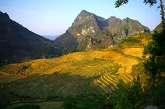 Karst landscape. Typical karst landscape of northern Vietnam. Area of Ha Giang Royalty Free Stock Photography