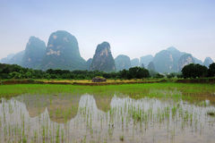 Karst landschap in Guangxi provincie, China Stock Foto's