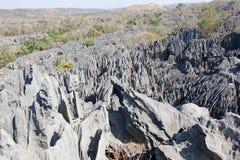 Madagascar landscape Royalty Free Stock Photography