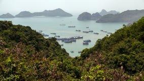 Karst mountain Cat Ba Island, Ha Long Bay, Vietnam timelapse. 4k stock video footage