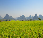 Karst mountain landscape in Yangshuo Guilin, China Stock Image