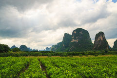 Karst mountains landscape in southern china Stock Images