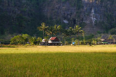 Karst rotsmuur in Ramang -ramang royalty-vrije stock afbeelding