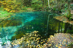 Karst spring at autumn Royalty Free Stock Photo