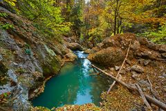 Karst spring in the forest Royalty Free Stock Photography