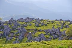Karst topografie (Shikoku-Karst) Stock Foto's