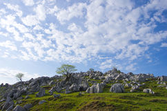 Karst topography (Shikoku Karst) Royalty Free Stock Photo