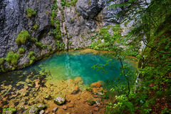 Karstic spring in Romania Royalty Free Stock Image