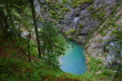Karstic spring in Romania Stock Images
