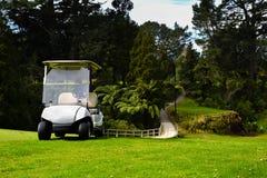 Kart de golfeurs de terrain de golf du Nouvelle-Zélande par le pont photographie stock libre de droits