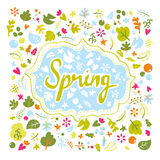 Karta dla wiosny Fotografia Stock