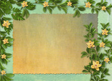 Karta dla zaproszenia z orchideami i gałązkami Fotografia Royalty Free
