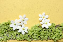 karta kwiaty rękodzieło fotografia stock