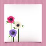 Karta z anemonowymi kwiatami Wektor EPS-10 Obrazy Royalty Free