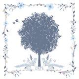 Karta z Dużym drzewem Fotografia Royalty Free