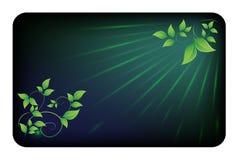 Karta z zielonymi liśćmi Zdjęcie Royalty Free