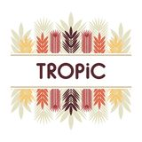 Karta, zaproszenie, sztandar z tropikalnymi liśćmi Rama z tropikalnymi roślinami royalty ilustracja