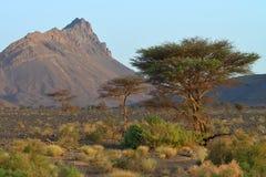 kartbokmorocco berg Royaltyfri Foto