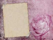 Karte auf dem Rosa Lizenzfreie Stockbilder
