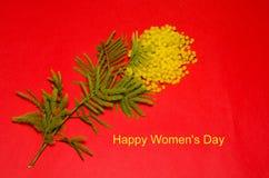 Karte der glücklichen Frauen Tagesmit einem Bündel der Mimose Stockfoto