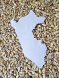 Karte des Gebiets von Peru im Weiß und im Hintergrund mit Körnern von Mais stockbilder