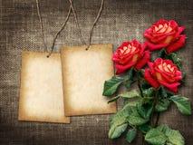 Karte für Einladung oder Glückwunsch mit roten Rosen Stockfoto