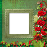 Karte für Glückwunsch mit roten Rosen Stockfotos