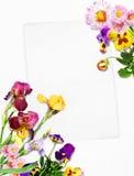 Karte mit Blumen Lizenzfreie Stockfotografie