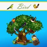 Karte mit bunten Vögeln auf dem Baum und Katze Stockfotografie