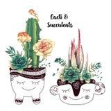 Karte mit den Kakteen und Succulents eingestellt Anlagen der Wüste stock abbildung