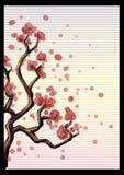 Karte mit einem Baum Kirschblüte vektor abbildung