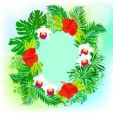 Karte mit tropischen Blumen-, Palmen- und Bananenblättern Lizenzfreies Stockbild