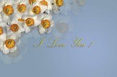 Karte mit weißen Narzissen und einem Gold, das ich liebe dich auf einem bläulichen Hintergrund grüßt Lizenzfreie Stockfotos