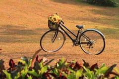 Karte und Muster mit Fahrrad stockfotografie