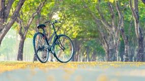 Karte und Muster mit Fahrrad Lizenzfreies Stockbild