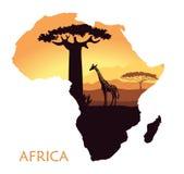 Karte von Afrika mit der Landschaft des Sonnenuntergangs in der Savanne, in der Giraffe, im Baobab und in der Akazie Es kann für  vektor abbildung