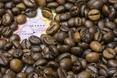 Karte von Uganda unter einem Hintergrund von Kaffeebohnen Lizenzfreie Stockfotos