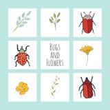 Karten mit Blumen, dem Grün und den netten Wanzen stock abbildung