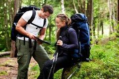 Karten-Waldkampieren Lizenzfreies Stockfoto