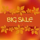 Kartenschablone auf Lager für Herbstverkauf Zusammenfassung unscharfe orange Hintergrund- und Fallblätter Sie können Ihren Text i Stockfoto