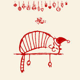 Kartka bożonarodzeniowa, dla twój projekta Santa śmieszny kot Obrazy Royalty Free