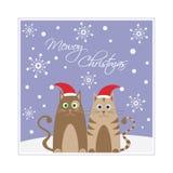 Kartka bożonarodzeniowa z kotami jest ubranym Santa kapelusze Zdjęcia Stock