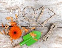Kartka z pozdrowieniami 2017 Zdjęcie Stock