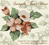 Kartka z pozdrowieniami. Kwiaty. Piękny tło. Zdjęcia Stock