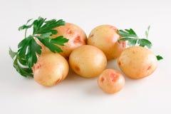 Kartoffel Stockbild