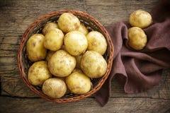 Kartoffel Lizenzfreie Stockfotografie