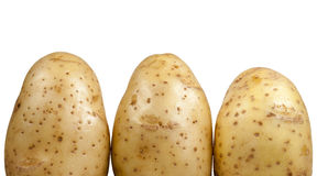 Kartoffel auf dem weißen Hintergrund Stockfotografie