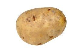 Kartoffel auf Weiß stockfotos