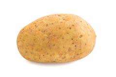 Kartoffel auf weißem Hintergrund Stockbilder